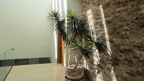 cerrada vista de las lomas 24, green house, huixquilucan. interlomas
