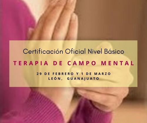 certificación oficial en terapia de campo mental básico