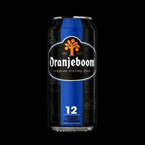 cerveza oranjeboom lata 500 ml 12% - envio sin cargo!!!