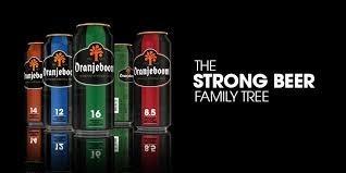 cerveza oranjeboom super strong 500 cc- zona norte- holanda