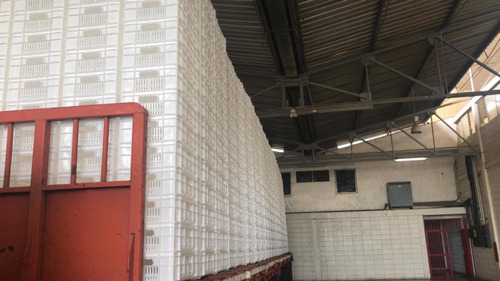 cestas plásticas de  25kg  3.5 verdes .material 100% virgen