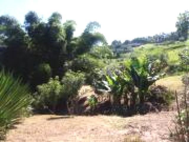 ch-3238 chácara a venda parque agrinco - guararema - sp - 2267