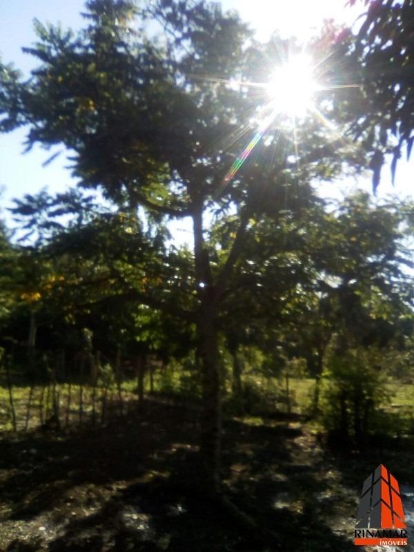 chacara - 098 - 32262685