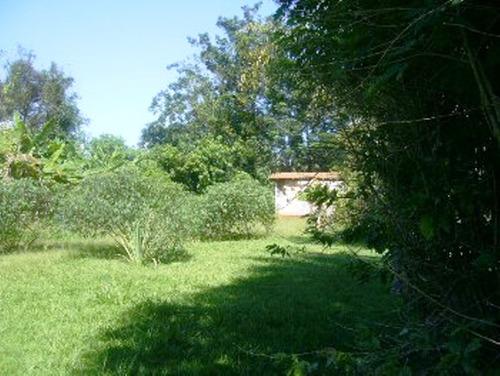 chácara - 3 quartos - rural - 5655