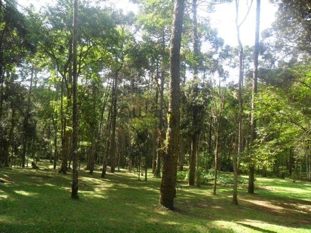chácara a venda no bairro jardim paulista em campina grande - 5492-1
