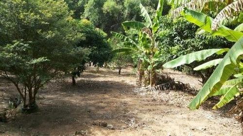 chácara a venda no bairro sousas em campinas - sp.  - ch0050-1