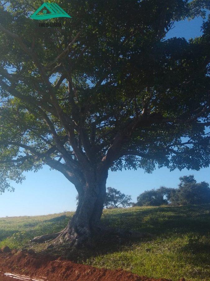 chácara a venda no bairro zona rural em pouso alto - mg.  - 320-1