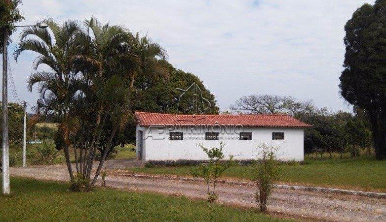 chacara - aparecidinha - ref: 32319 - v-32319