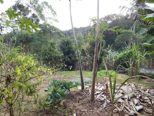 chácara bem localiza com lindo pomar e espaço p planta