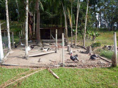 chácara bem localizada com sauna e piscina