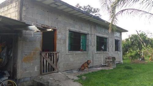 chácara c/ 3 dorm. em itanhaém-sp, no gaivota! ref 3861-p