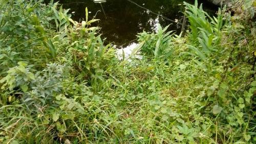 chácara cercada no jardim são fernando, em itanhaém,4291