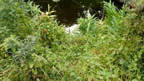 chácara cercada no jardim são fernando, itanhaém-sp! litoral