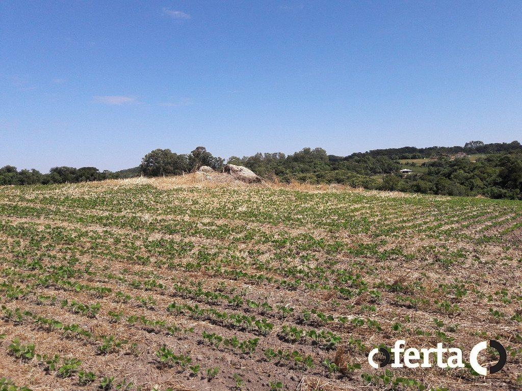 chacara - colonia cristina - ref: 470 - v-470