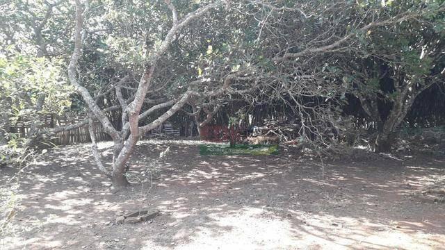 chácara com 1 dormitório à venda, 1500 m² por r$ 270.000 - jardim guadalupe - caçapava/sp - ch0145