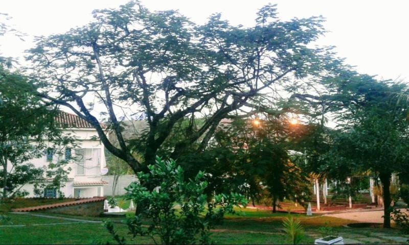 chácara com 16.000 m2  no distrito de três irmãos, cambuci - rj, local para pousada, hostel, retiro espiritual. - 3809