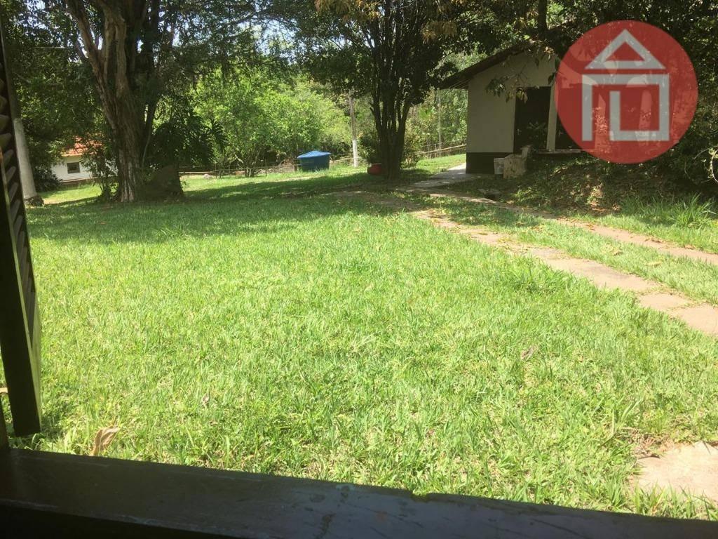 chácara com 3 dormitórios à venda, 15000 m² por r$ 700.000 - curitibanos - bragança paulista/sp - ch0196