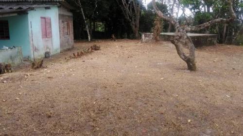 chácara com 3 quartos no jardim coronel, itanhaém-sp!!!