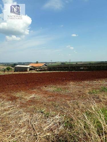 chácara com 4 dormitórios à venda, 10000 m² por r$ 380.000 - jardim shenandoa - marialva/pr - ch0018