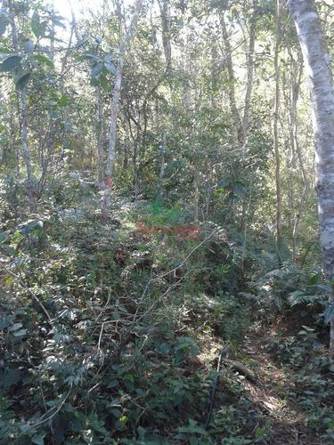 chácara com 48.000 m² 2 lagos nascente bosque