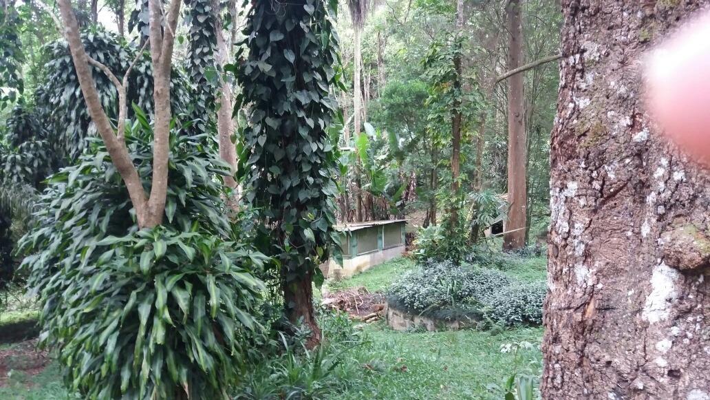 chácara com 5.000 m palmeiras suzano sp