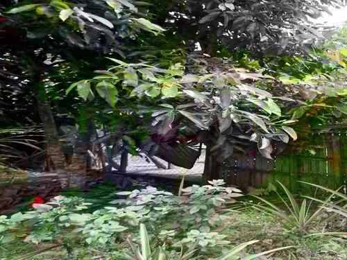 chácara com maravilhosa vista ótima casa