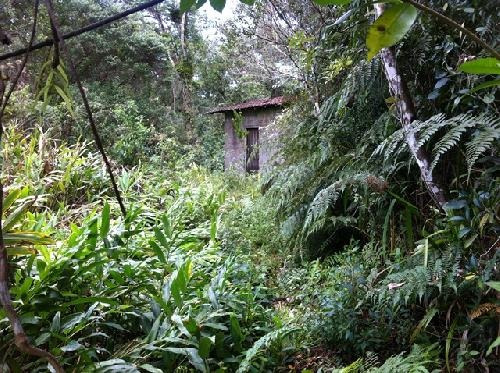 chácara com pequena construção em itanhaém no litoral sul.
