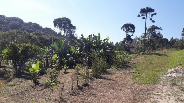 chácara com pequeno lago fácil acesso e espaço para plantar
