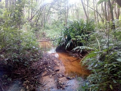 chacara com riacho corrente,  e pequena kascatinha