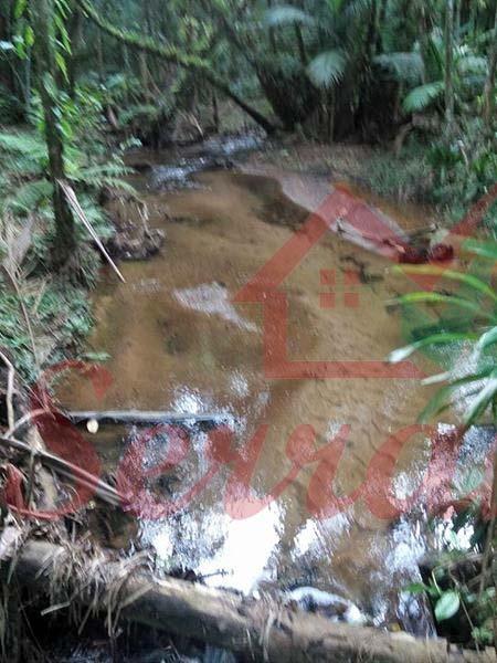 chácara com riacho de água cristalina em juquitiba