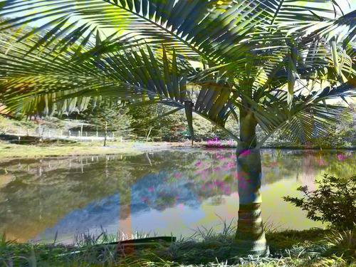 chácara com rico em água bem localizado