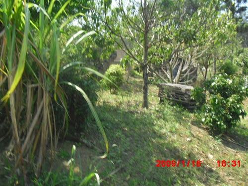 chácara em formação bairro murundu