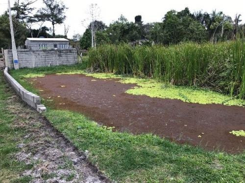 chácara em itanhaém-sp, possui lago! entrada + parcelas!!!