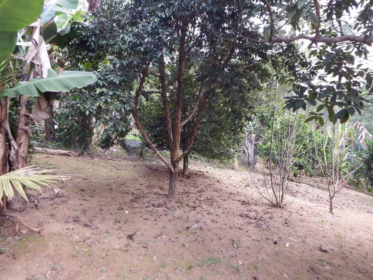 chácara em juquitiba bem localizado com pomar