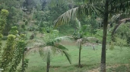 chácara em juquitiba com 2 lagos, churraqueira e piscina