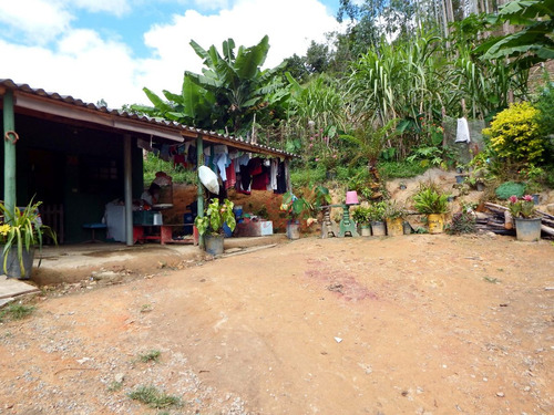 chácara em juquitiba com 20.000 m² c plantação da eucalipto