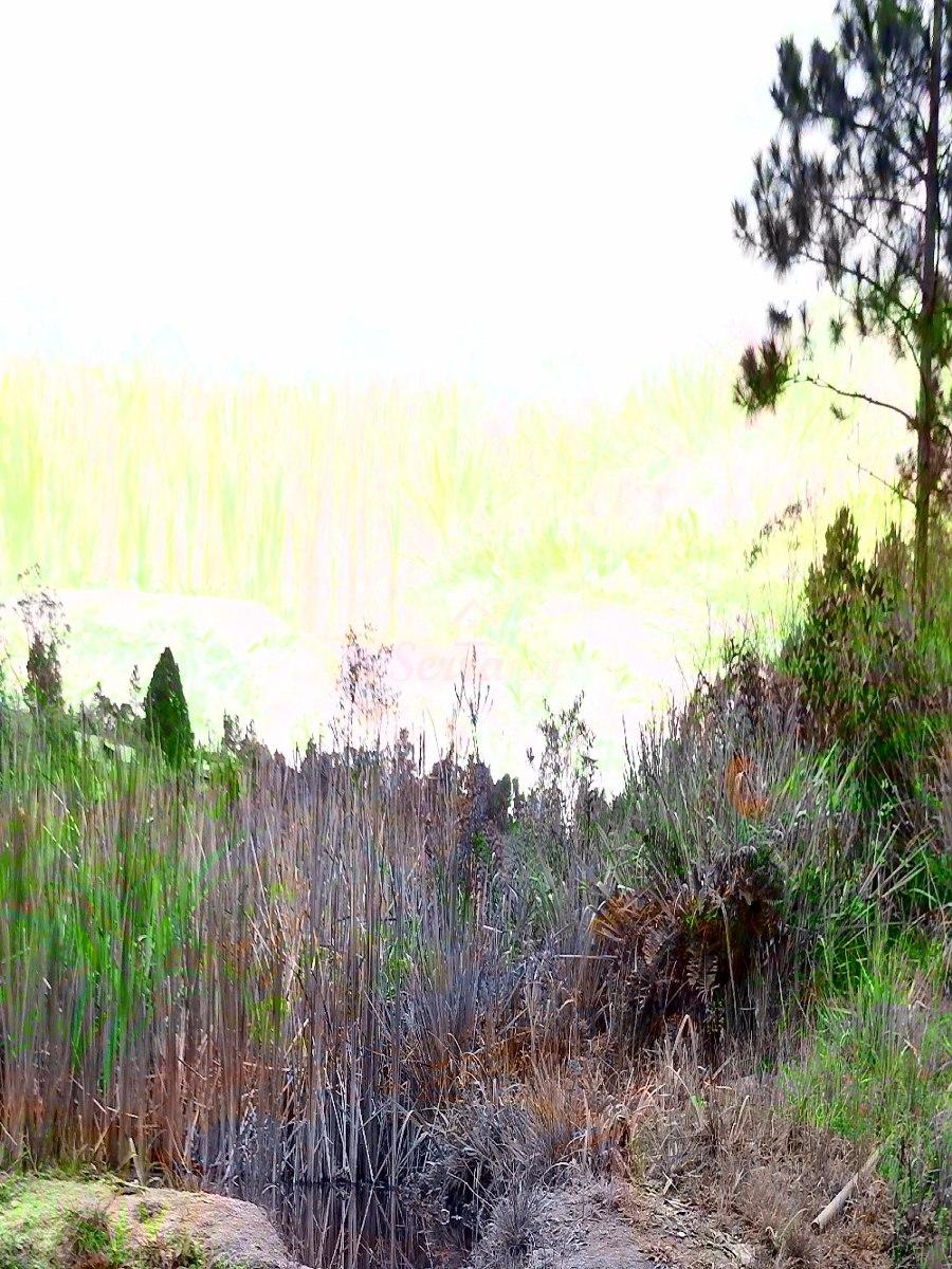 chácara em juquitiba com belo lago