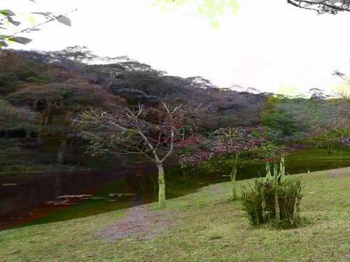 chácara em juquitiba com belo lago repleto de peixes