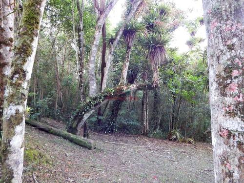 chácara em juquitiba com bosque e nascente própria