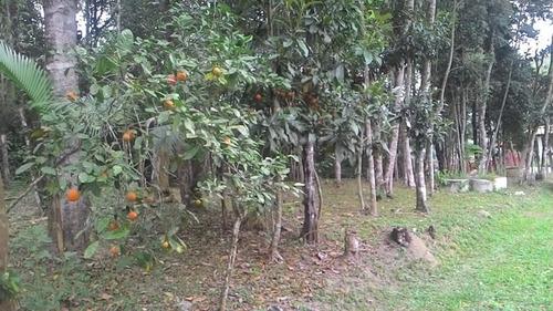 chácara em juquitiba com chalé e bosque