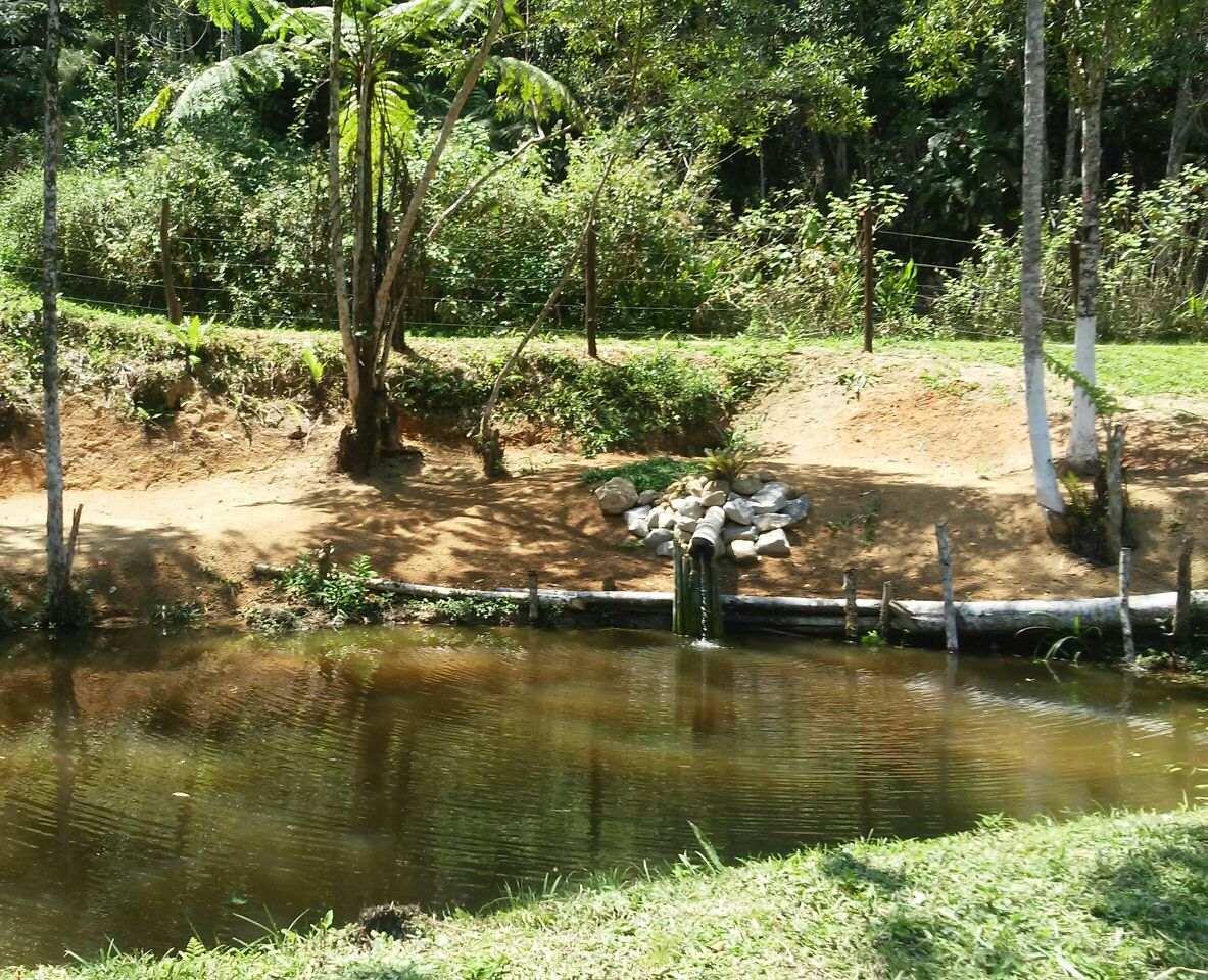 chácara em juquitiba com nascente e lago repleto de peixe