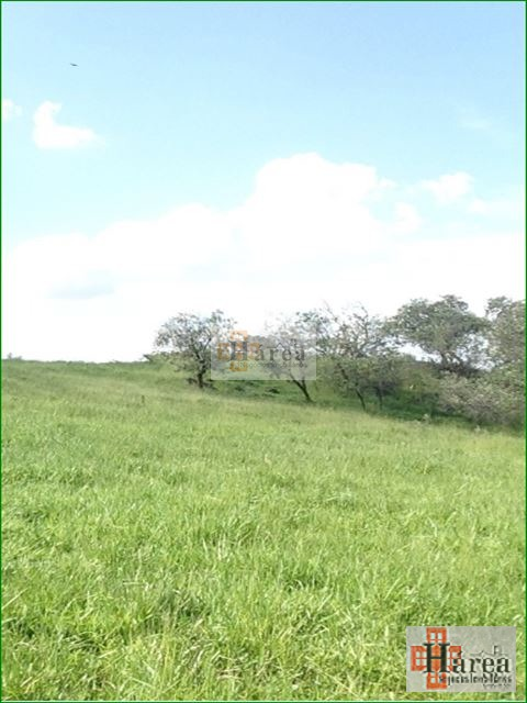 chácara em sorocaba bairro caputera - v7698