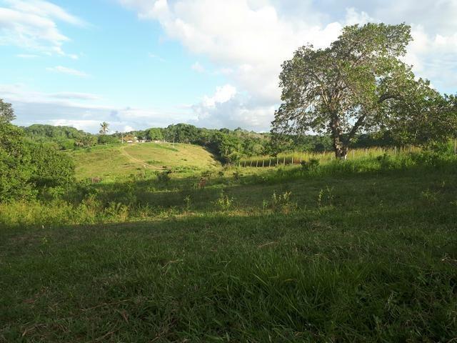 chácara em vila rural, igarassu/pe de 0m² 4 quartos à venda por r$ 850.000,00 - ch280741