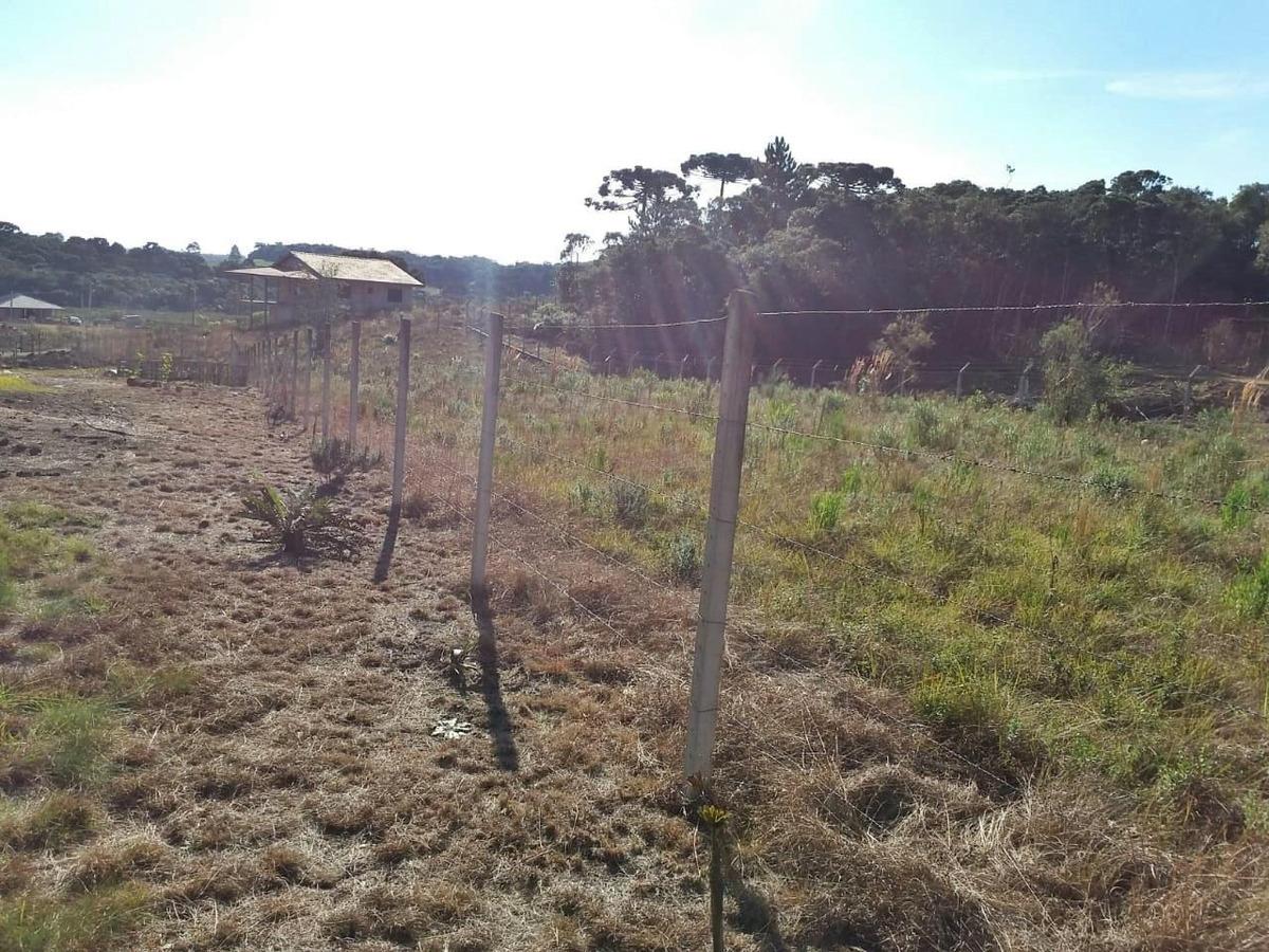 chácara em zona rural, tijucas do sul/pr de 0m² à venda por r$ 115.000,00 - ch426835