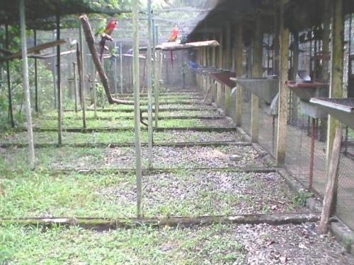 chácara excelente em boa localidade no bairro umuarama 1861e