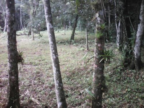 chácara medindo 3000m²,em itanhaém/sp