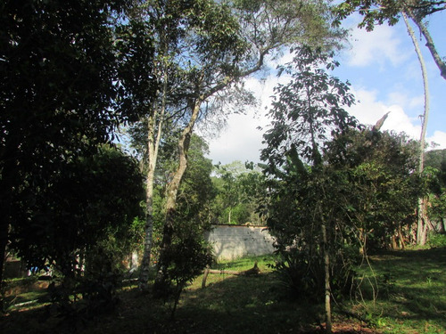 chácara modesta/casa/pomar/horta/gramada/moradia/ref:04725