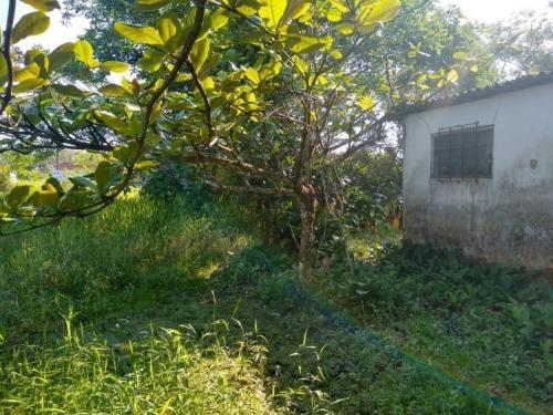chácara na praia em itanhaém com acesso de terra  6114rafa