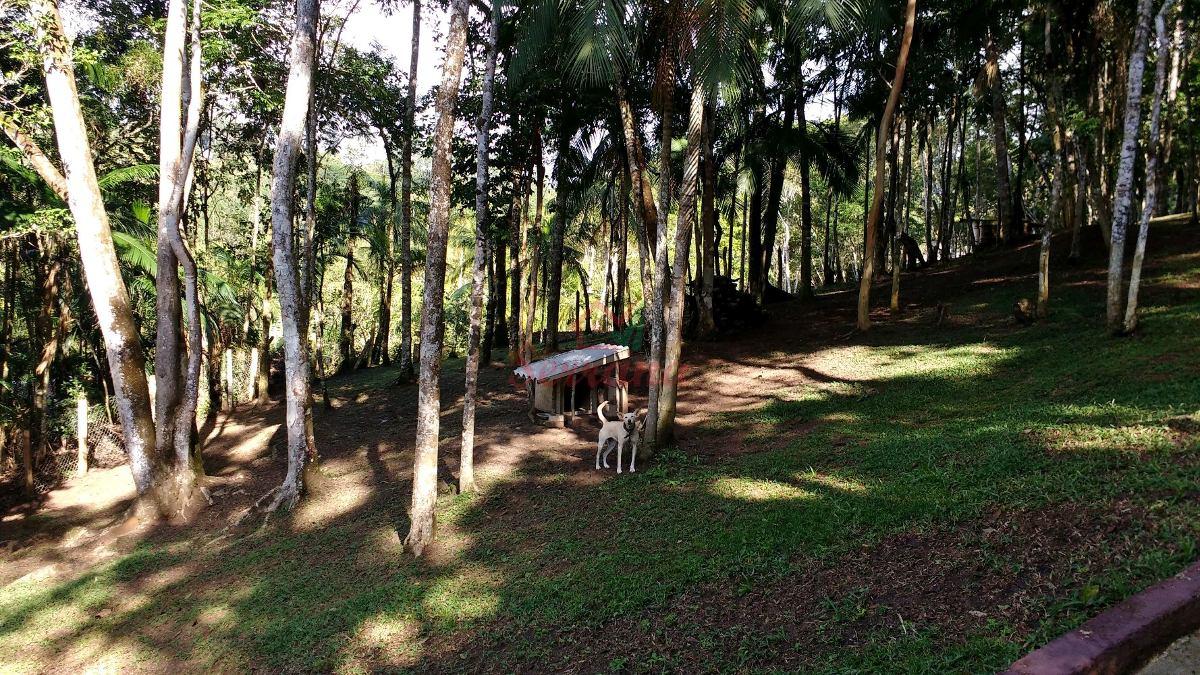 chácara na represa com chalé e área toda bosqueada