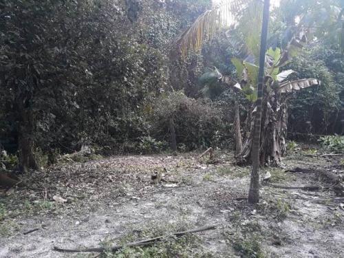 chácara no bairro coronel, em itanhaém,ref. c0028 l c